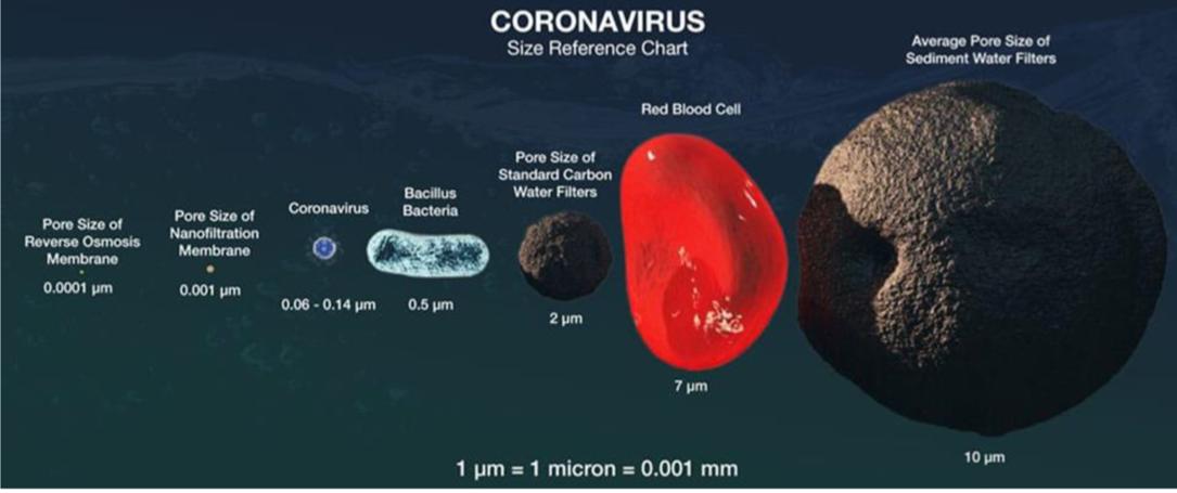 coronavirus size reference chart